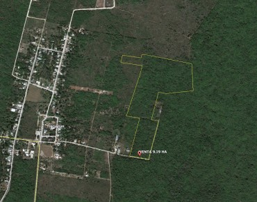 LOT FOR SALE IN TIXCUYTUN